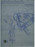 Roberto Luongo Hockey Printing Plate - Authentic