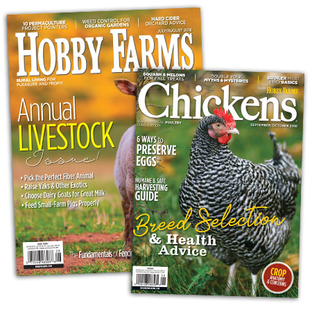 Chickens + Hobby Farms